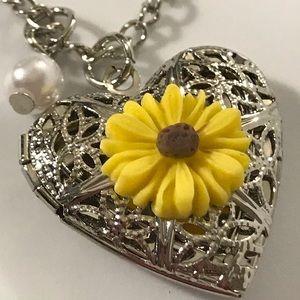 Jewelry - Aromatherapy Heart-Shaped Locket Pendant Necklace